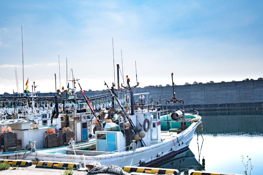 East Asian NGOs expecting Japan's stronger regulation against IUU fishery